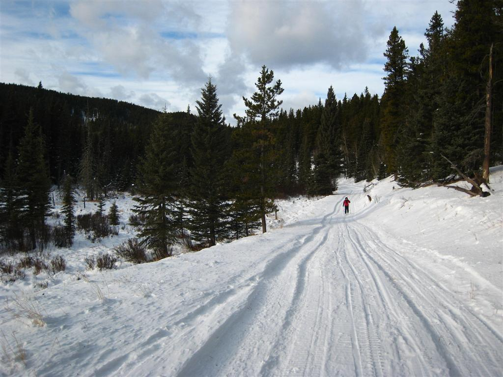 Iron Springs trail at West Bragg Creek