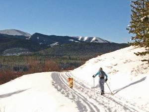 Moose Loop at West Bragg Creek Dec 24, 2008  Photo by Steve Riggs