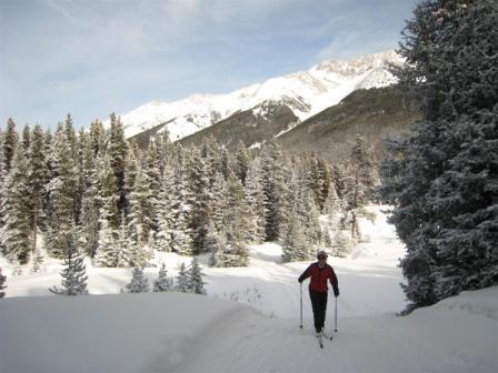 Tyrwhitt trail in PLPP Feb 7, 2009