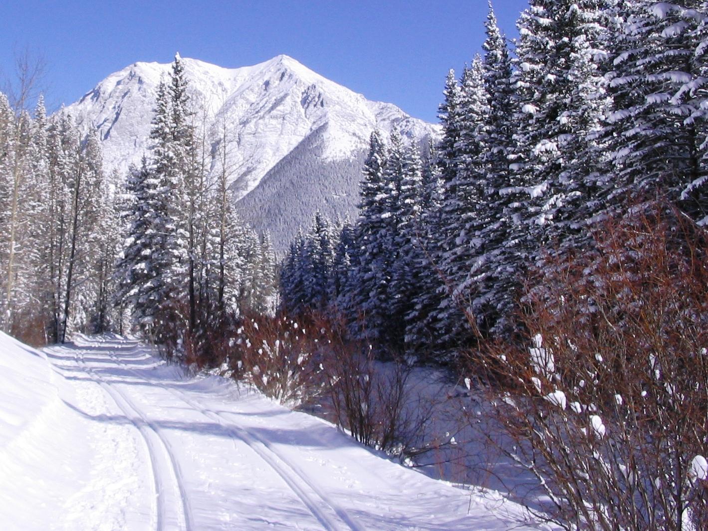 Ribbon Creek Feb 26, 2009