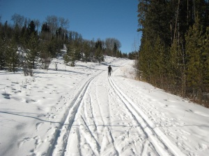 Crustal Line trail at West Bragg Creek Mar 6, 2009. Photo courtesy of Andrew