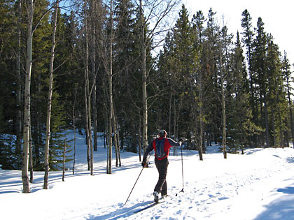 Elbow Trail at West Bragg Creek. March 26, 2009. Photo courtesy of Steve Riggs