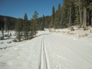 Iron Springs trail at West Bragg Creek Mar 6, 2009. Photo courtesy of Andrew